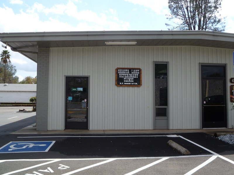 Contact Us | Shasta Lake Veterinary