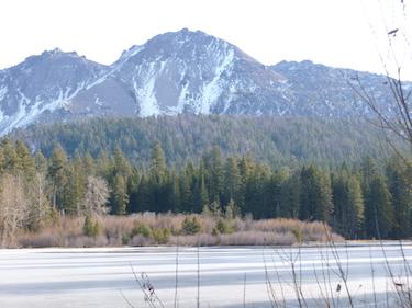 Shasta Lake Veterinary