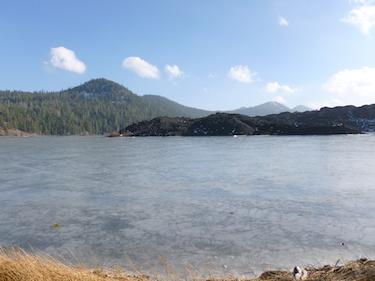 Privacy & Policies | Shasta Lake Veterinary