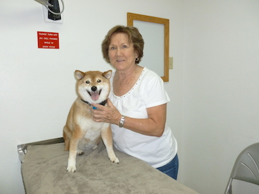 Testimonies | Shasta Lake Veterinary